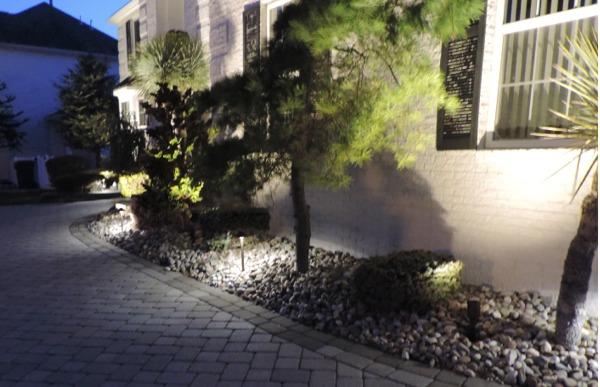 OUTDOOR LIGHTING Plants
